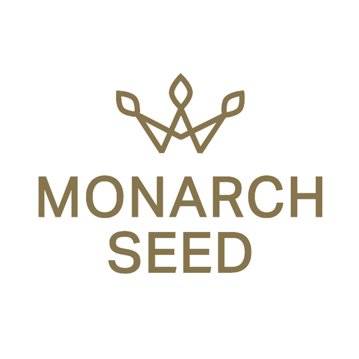 MONARCH SEED